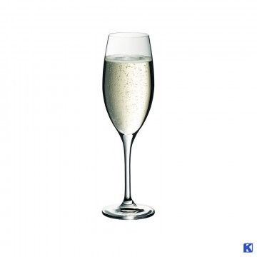 Champagne glass 25 cl, 12 stk kartong